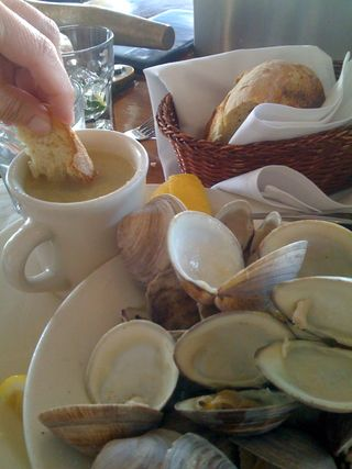 Clams and a hand