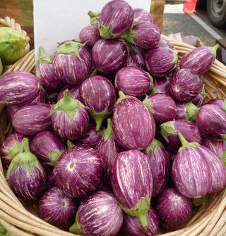 Verigated Eggplant